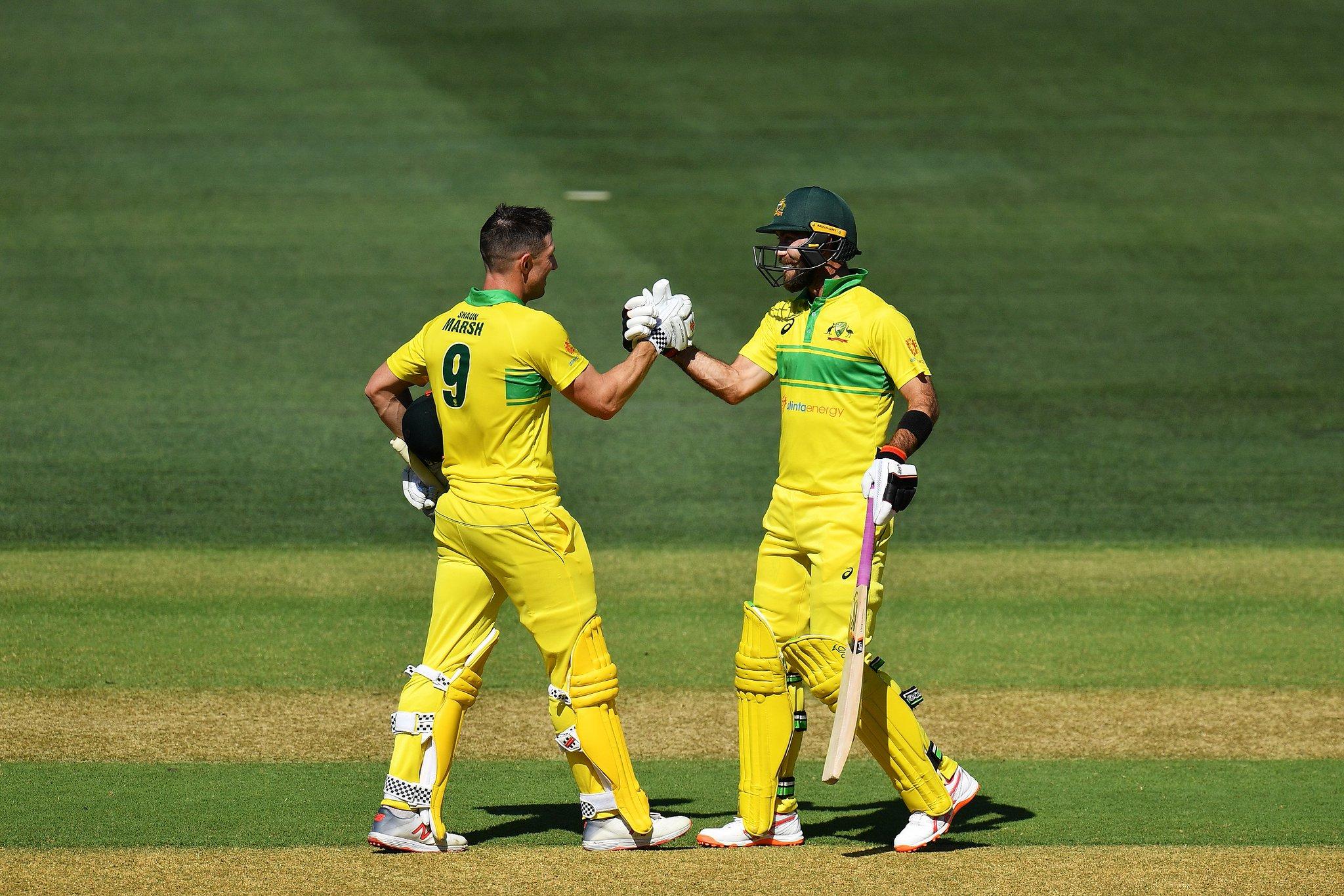 australia team ( image source: twitter)