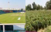 Khanewal Cricket Stadium. (Photo Source: Twitter)