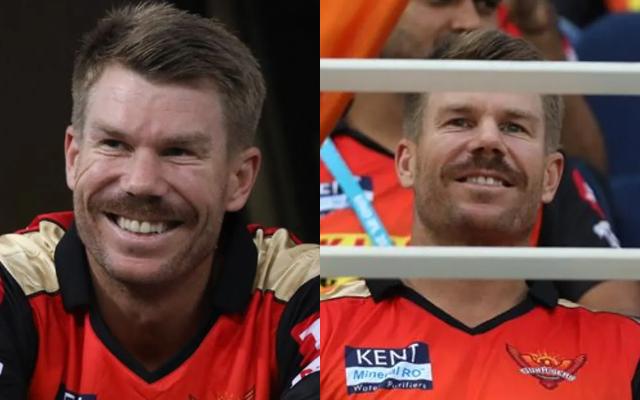 David Warner supporting Sunrisers Hyderabad. (Photo Source: IPL/BCCI)